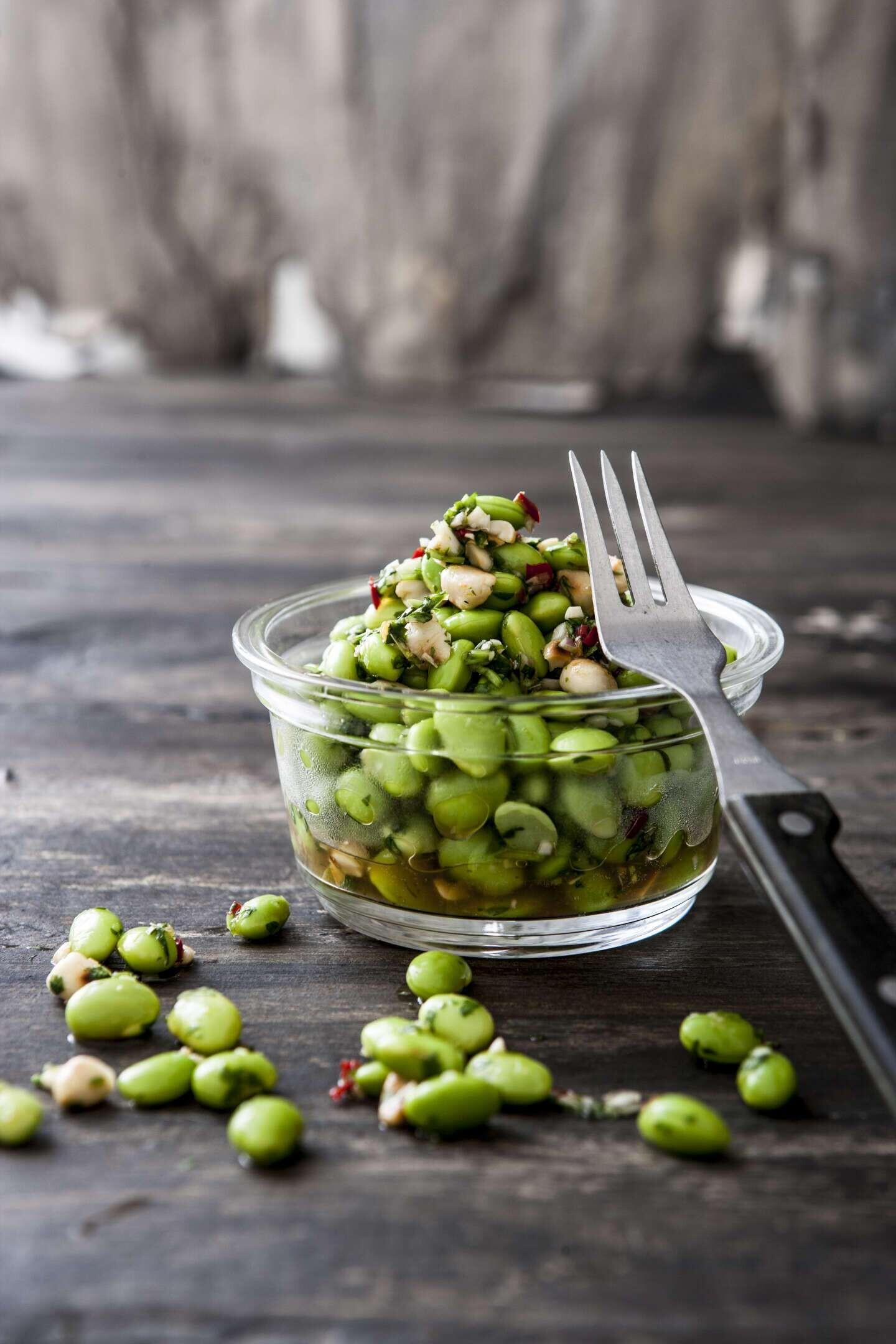 Annes Hjernøes salater: Helt perfekt til picnic   Lev nu   DR