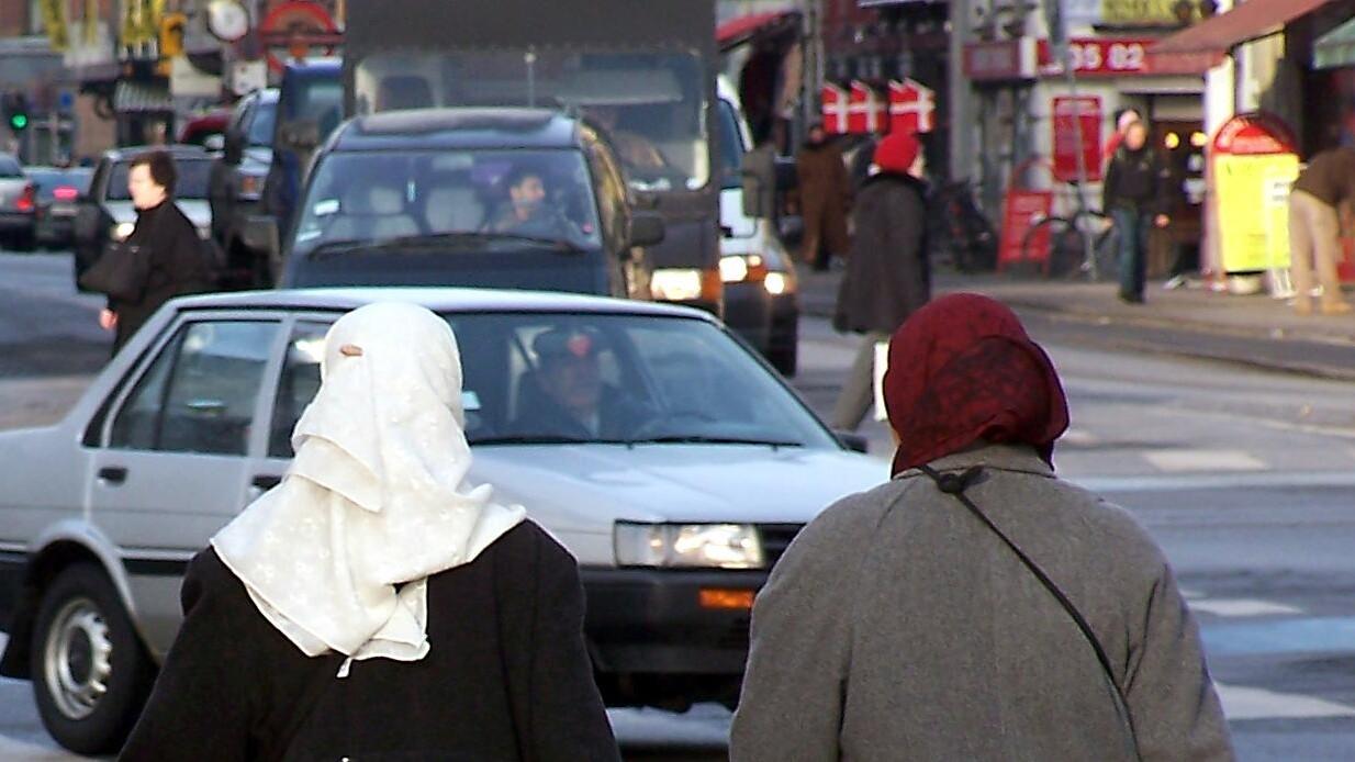 Fyret for et tørklæde: To kvinders kamp når EU | Udland | DR