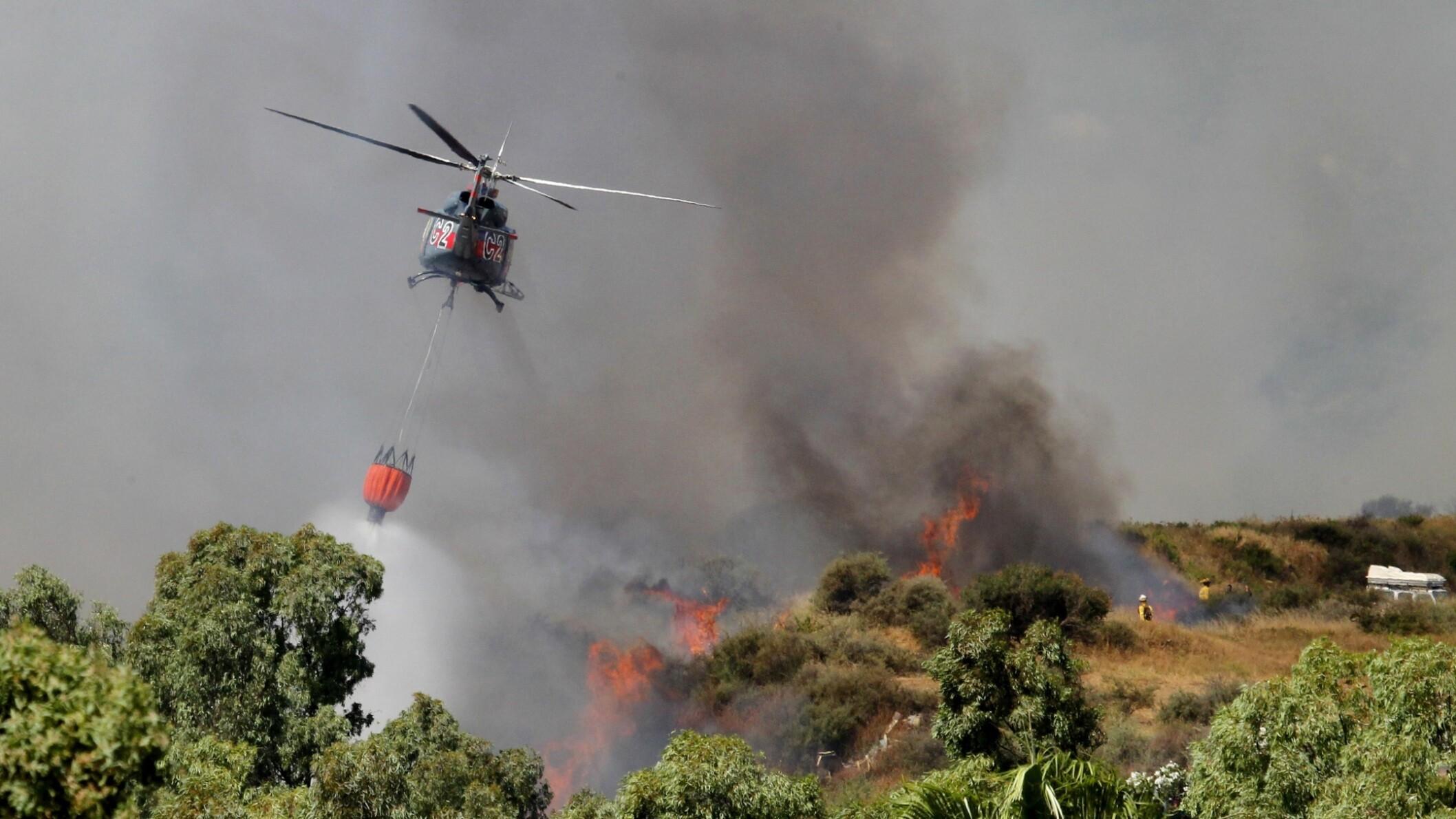 Forskning: Menneskeskabte klimaforandringer fører til flere skovbrande | Udland | DR