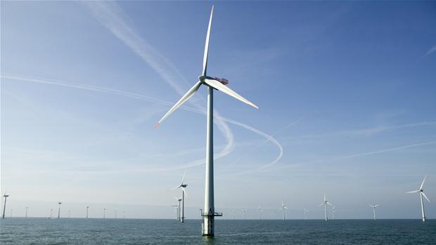 Sorte vindmøller skal hindre kollision med fugle   Viden   DR