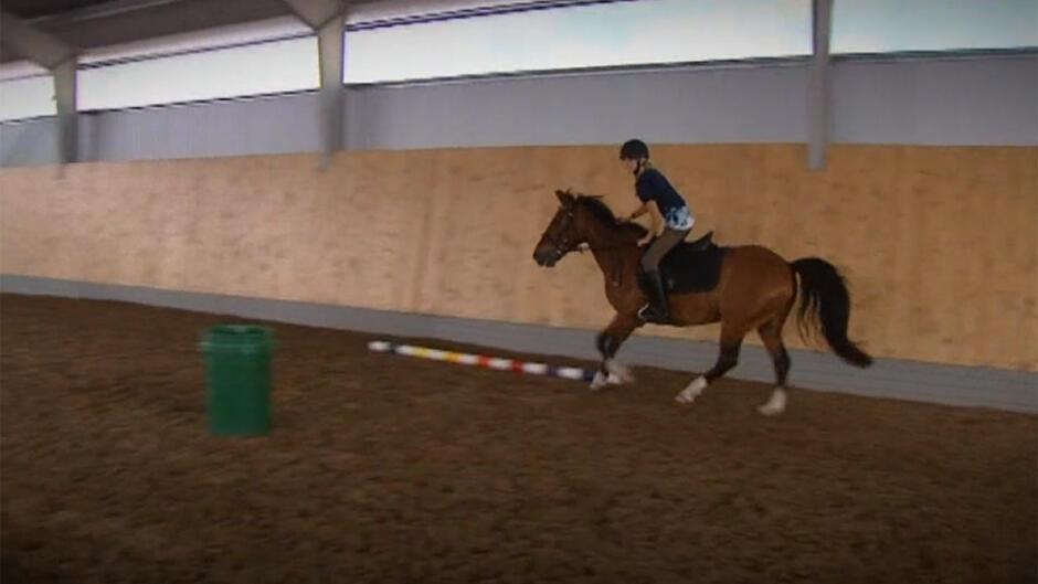 Ponyskolen (9)