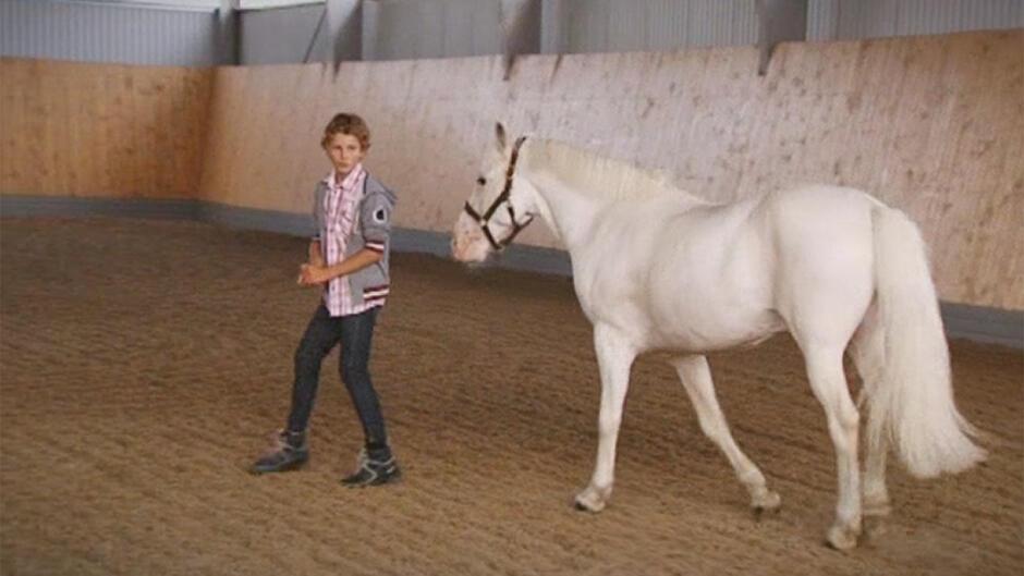 Ponyskolen (10:16)