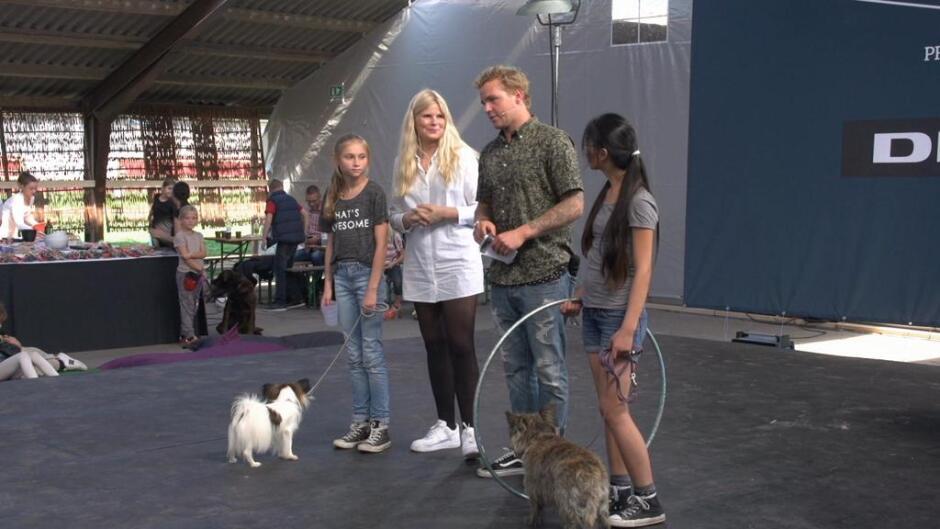 Danmarks bedste dyretræner