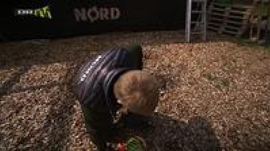 Store Nørd: Nørd - the movie (6)