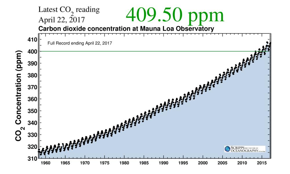CO2 koncentrationen i atmosfæren er steget fra ca. 280 til over 400 ppm siden man begyndte at måle i 1958. Graf fra: San Diego Universitet.
