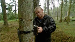 Simon Bomholt er frivillig i Projekt Dansk Ulv og er her ved at tjekke et afde vildtkameraer, der gerne skulle forevige en ulv.
