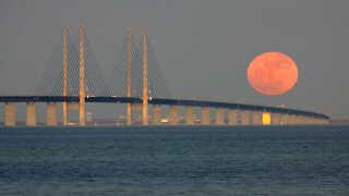 Nyheden om, at en såkaldt superfuldmåne kunne ses over Danmark, høstede mange klik i november.