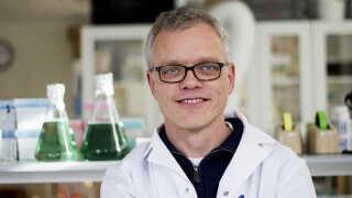 Claus Felby er professor i biomasse og ansat på Københavns Universitet. Han og kollegerne samarbejder meget med brasilianske forskere.