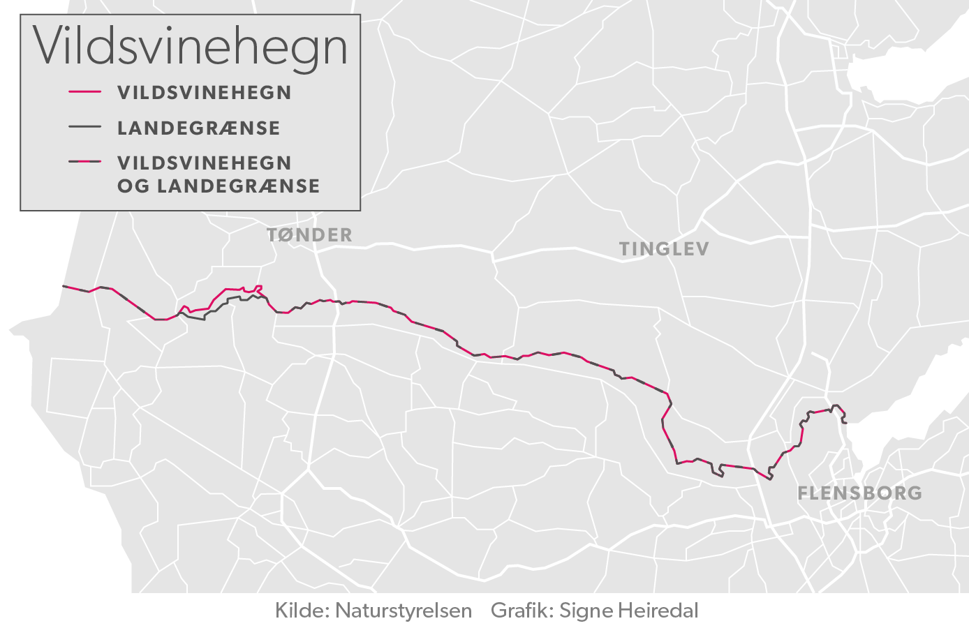 Vildsvinehegnet skal stort set følge den dansk-tyske grænse.