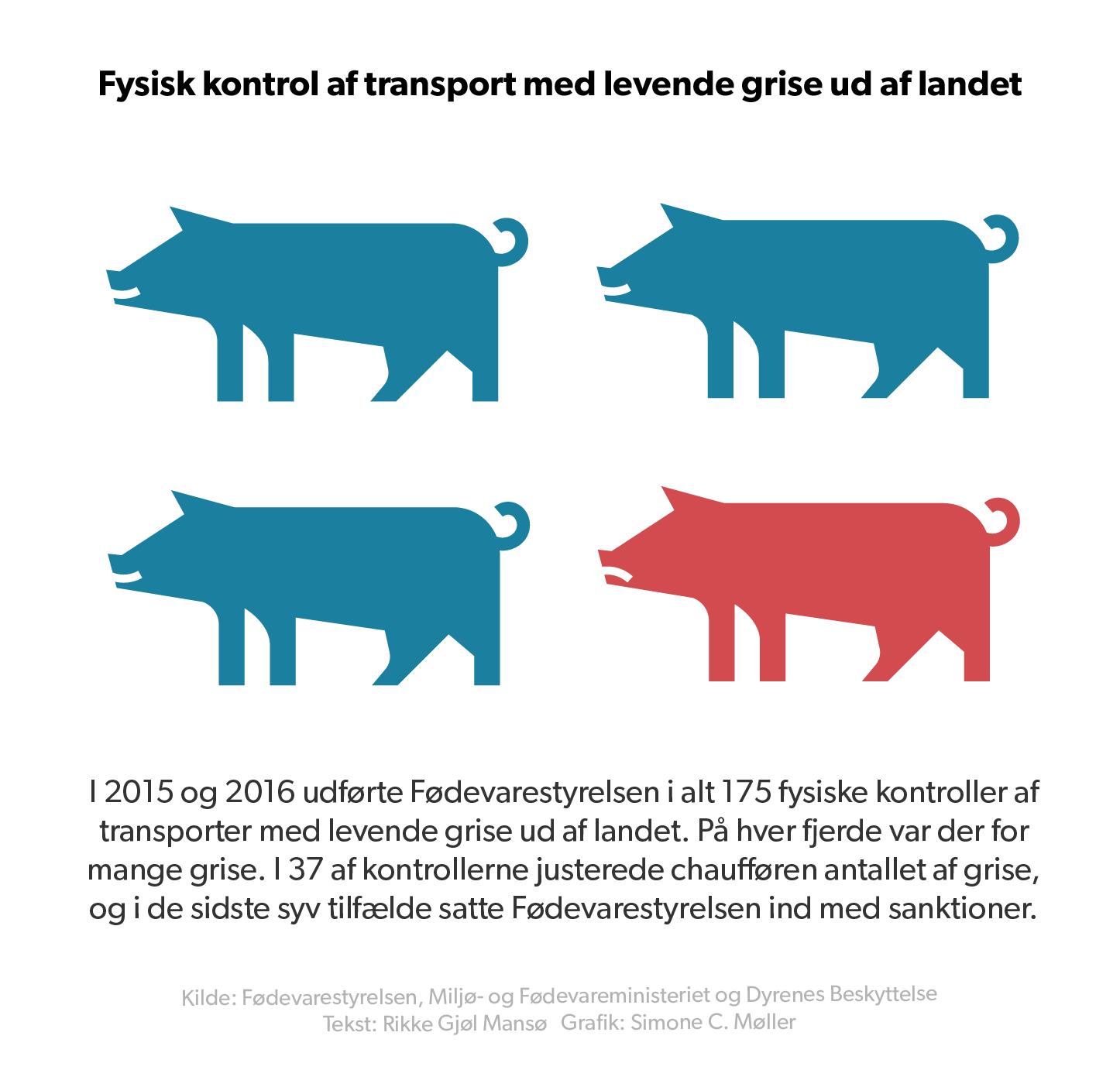Grafik over fødvarestyrelsens kontroller af grise der eksporteres til udlandet levende.
