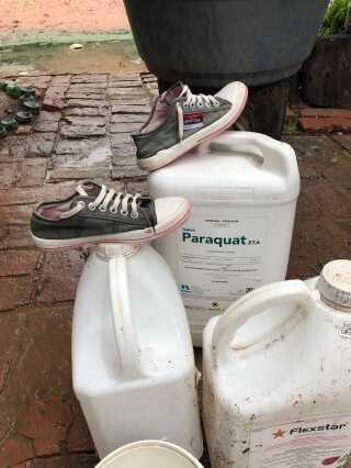 Giftstoffet Paraquat bruges i Argentinas sojaproduktion, men er helt forbudt at bruge i Danmark.
