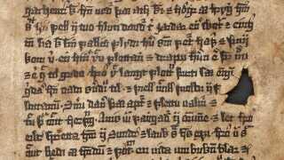 En passage fra Ganger-Rolfs saga. Foto: Jóhanna Ólafsdóttir, © Árni Magnússon Institute for Icelandic Studies, Reykjavík.
