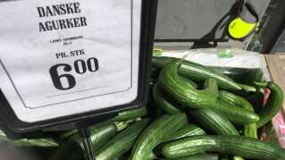 Tal fra Danmarks Statistik viser, at salget af økologiske fødevarer steg med 15 procent i 2016, så det nu anslået er 9,6 procent af det samlede fødevaresalg.