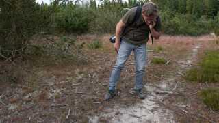 Thomas Boesdal studerer nogle spor i sandet. En del af at spore ulve er at det ofte er svært at sige med sikkerhed om det er en ulv.