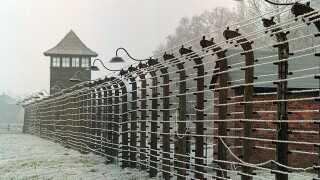 Det kan blive strafbart at kalde eksempelvis Auschwitz-koncentrationslejren - som ses her på billedet - for polsk.