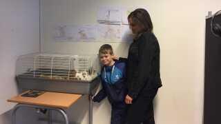 10-årige Frederik Dahl og hans lærer Stine Nürnberg i klasselokalet på Skrøbelev Skole sammen med kaninen Zuzu.