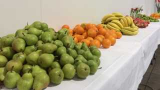 Der skal rigeligt med frugt på bordet, når 10.000 tillidsfolk i dag samles i Messe C.