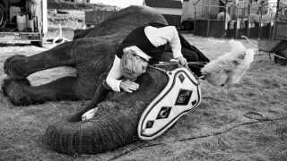 I de første mange uger efter Bernhard Kaselowsky købte Ramboline, sov han hos hende i stalden for at vinde hendes tillid.