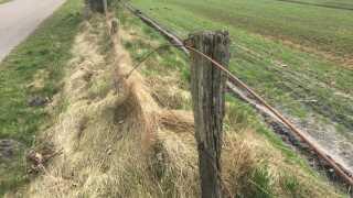 Wirerne i det gamle hegn er rustne og træstolperne er rådne.
