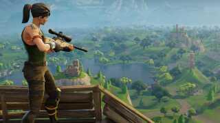 I spillet handler det om at være den sidste overlevende tilbage. Derfor er det en ofte brugt taktik at spillere gemmer sig og skyder hinanden på afstand.
