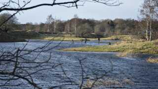 Det er den her sø ved Borup på Sjælland, som nu skal undersøges igen.