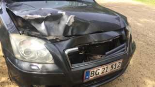 Sådan ser en bil ud efter et sammenstød med et rådyr med cirka 80 kilometer i timen. Rådyret døde på stedet og bilen blev af mekanikeren kaldt for totaltskadet. Ulykken har ikke relation til ulykken på motorvejen nær Give. Privatfoto.