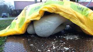 De smuldrende skulpturer er nu pakket ind i vintermåtter for at mindske skaderne.