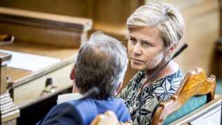 Liberal Alliance har ingen politikere i Europa-Parlamentet nu. Men det håber Mette Bock, at hun kan ændre på.
