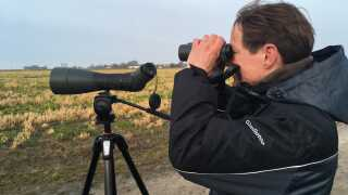 Professor ved Institut for Biosciense ved Aarhus Universitet, Jesper Madsen, er udstyret med kikkerter og en særlig lang tålmodighed, når han venter på, at bramgæs skal sætte sig på den rigtige side af fangstnettet.