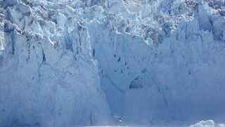 Store Qarajag-gletsjeren i Grønland. Afsmeltningen fra iskappen på Grønland er de sidste 20 år accelereret. Læg mærke til helikopteren nederst i billedet.