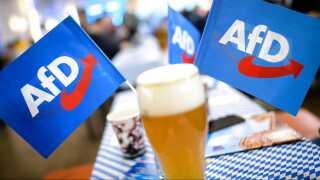 Alternative für Deutschland blev på få år det største oppositionsparti i Tyskland.