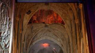 Træskelettet i katedralens tag blev ædt af flammerne, og der skal bruges store mængder egetræ, hvis det skal genopbygges.