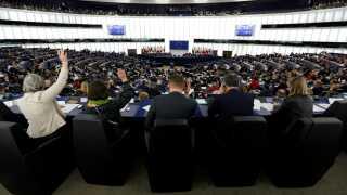 Her stemmer parlamentarikerne i Strasbourg i marts i år.