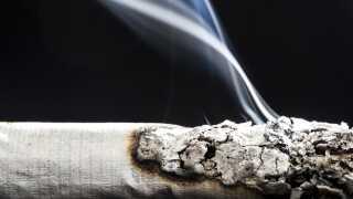 For første gang i to årtier er andelen af rygere steget.  I 2016 røg 21,1 procent af befolkningen, men sidste år steg andelen til 23,1 procent.