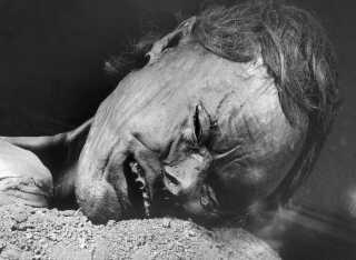Det er vilde detaljer, de nye teknologier afslører: Grauballemanden barberede fx sit skæg cirka 3 uger før han døde for omkring 2300 år siden.