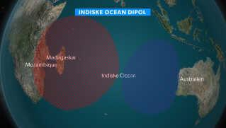 Indiske Ocean Dipol
