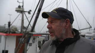 - Når de suger, så ødelægger de bunden, det er helt klart, siger Kurt-Inge Lundgren fra Råås havn.