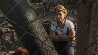 En af overlevende, Theodoros Christopoulos, forsøger at danne sig et overblik over skaderne efter de store skovbrande.