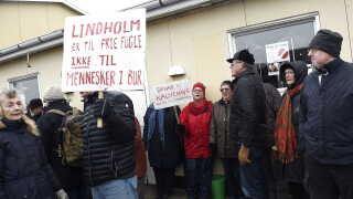 Mellem 300-400 demonstranter havde fundet vej til havnen i Kalvehave, vurderer Sydsjællands og Lolland-Falsters Politi.  Mange havde medbragte skilte, hvor de havde skrevet slagord.