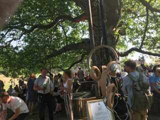 """B&O-hørebøffer hænger ned fra grenene fra """"Det magiske træ"""". I dem kan man høre en specialproduceret podcast."""
