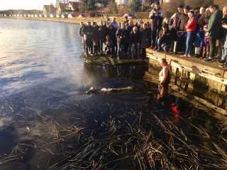 Først hoppede en kvinde i det kolde vand iført badedragt. Efter lidt tid fulgte Daniel Kristensen og en anden mand i underbukser.