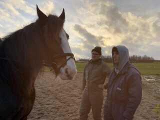 Jacob Weil (yderst til højre) og Andreas Kousholt med Shire-hesten Skovlys Karisma.