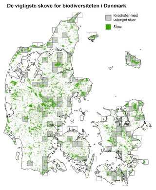 I undersøgelsens hovedscenarie har forskerne udpeget en række skovområder, som kunne udgøre et landsdækkende biodiversitetsnetværk af danske løvskove.
