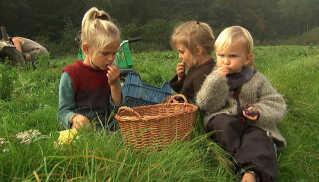 Magne, Ylva og Alvin bruger naturen som legeplads og spisekammer.