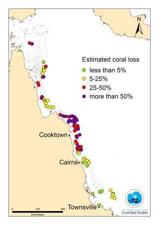 Kortet her viser de rev, som forskerne har undersøgt. De værst ramte rev befinder sig i den centrale og nordlige del af Great Barrier Reef.