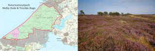 Naturnationalpark Melby Hede & Tisvilde Hegn kunne blive et samlet 21 km2 stort naturområde, dannet af Liseleje Klitplantage, Melby Overdrev, Asserbo Klitplantage og Tisvilde Hegn.