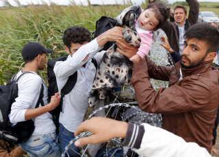Syriske flygtninge forcerer pigtrådshegnet mellem Serbien og Ungarn. REUTERS/Laszlo Balogh TPX IMAGES OF THE DAY