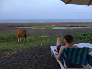 Lovina Beach er med sit sorte sand slet ikke som de andre idylliske strande på Bali.