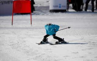 Vinderrobotten,Tae Kwon V, i aktion i skiresortet ved Hoenseong i Sydkorea