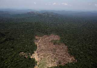 Miljøforkæmpere frygter for mere skovrydning i Amazonas.